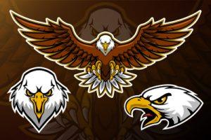 Eagle Mascot Preview